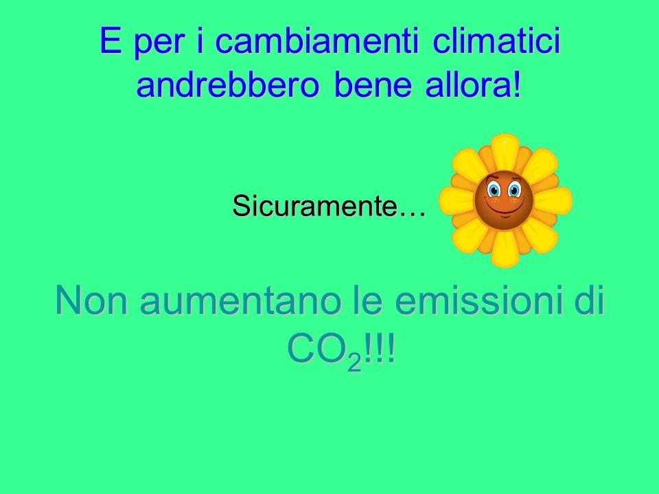 E per i cambiamenti climatici andrebbero bene allora! Sicuramente… Non aumentano le emissioni di CO 2 !!!