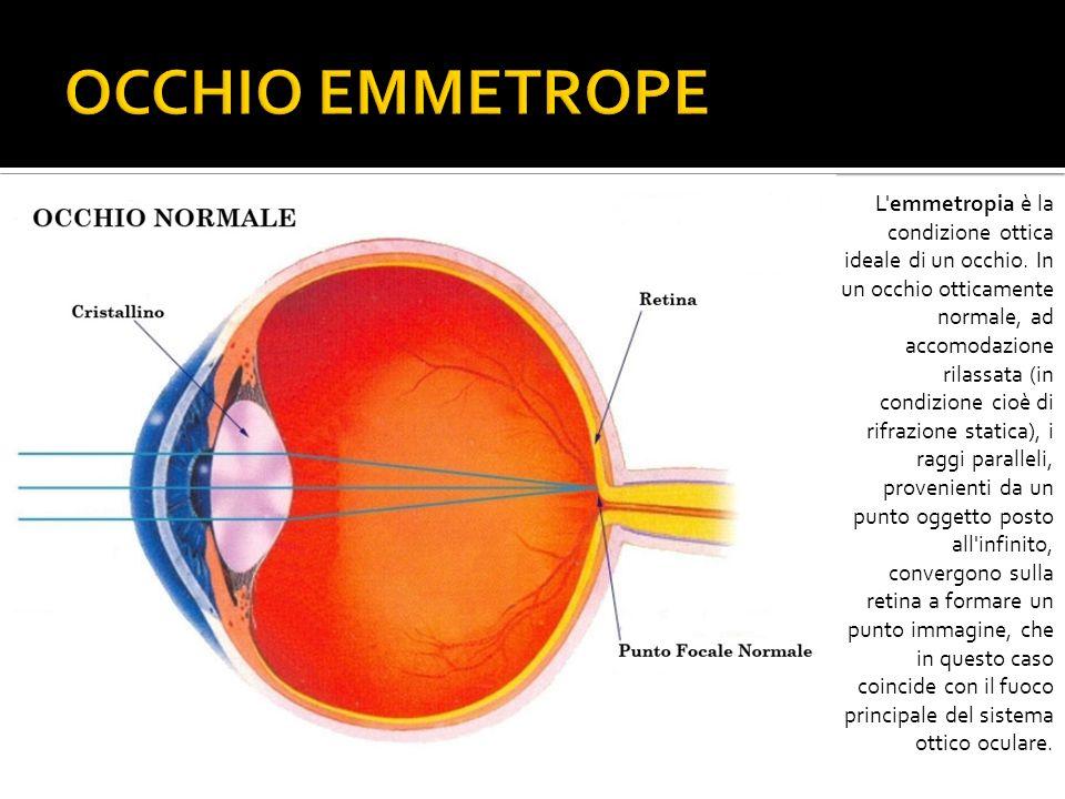L'emmetropia è la condizione ottica ideale di un occhio. In un occhio otticamente normale, ad accomodazione rilassata (in condizione cioè di rifrazion