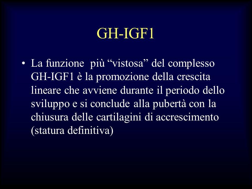 GH-IGF1 La funzione più vistosa del complesso GH-IGF1 è la promozione della crescita lineare che avviene durante il periodo dello sviluppo e si conclu