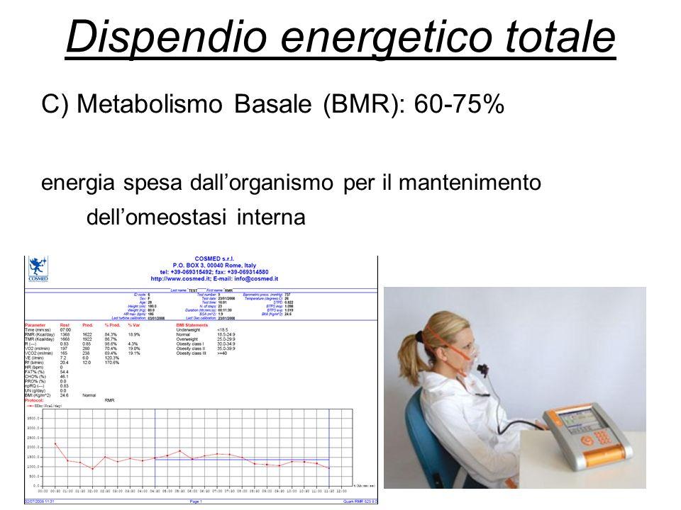 C) Metabolismo Basale (BMR): 60-75% energia spesa dallorganismo per il mantenimento dellomeostasi interna Dispendio energetico totale