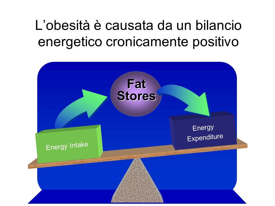 Lobesità è causata da un bilancio energetico cronicamente positivo Energy Intake Energy Expenditure Fat Stores