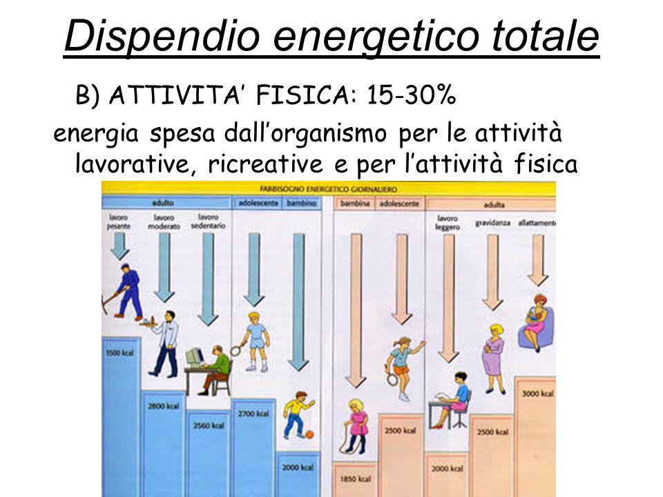 B) ATTIVITA FISICA: 15-30% energia spesa dallorganismo per le attività lavorative, ricreative e per lattività fisica Dispendio energetico totale