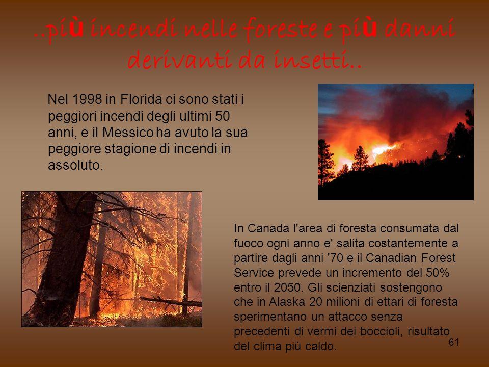 61..pi ù incendi nelle foreste e pi ù danni derivanti da insetti.. Nel 1998 in Florida ci sono stati i peggiori incendi degli ultimi 50 anni, e il Mes