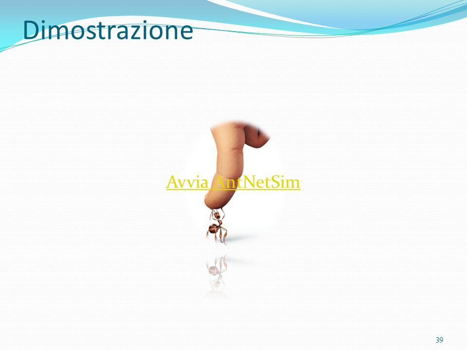 Dimostrazione Avvia AntNetSim 39