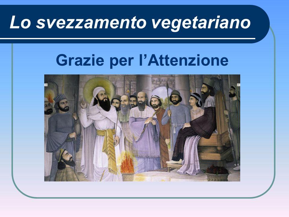 Lo svezzamento vegetariano Grazie per lAttenzione