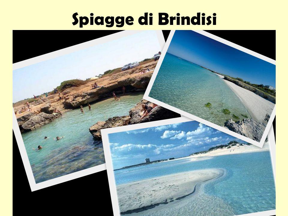 Spiagge di Brindisi
