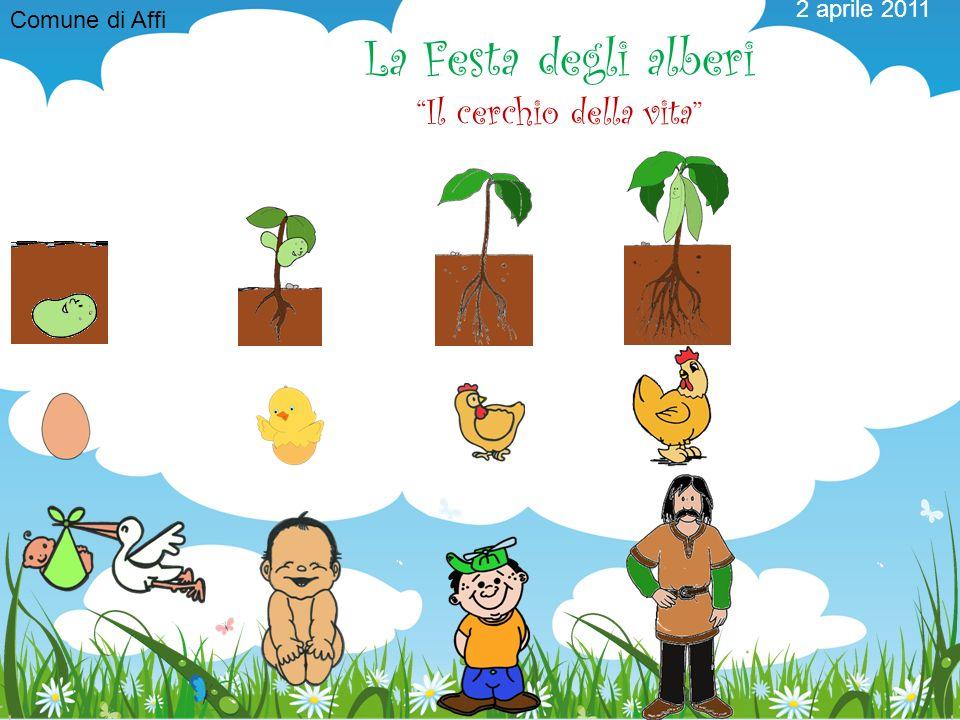2 aprile 2011 La Festa degli alberi Il cerchio della vita Comune di Affi