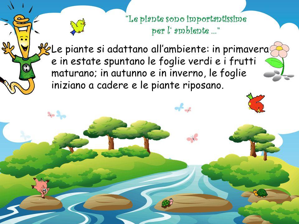 Le piante sono importantissime per la vita degli animali … Con i frutti e con le foglie, danno da mangiare agli animali affamati, dai più alti come le
