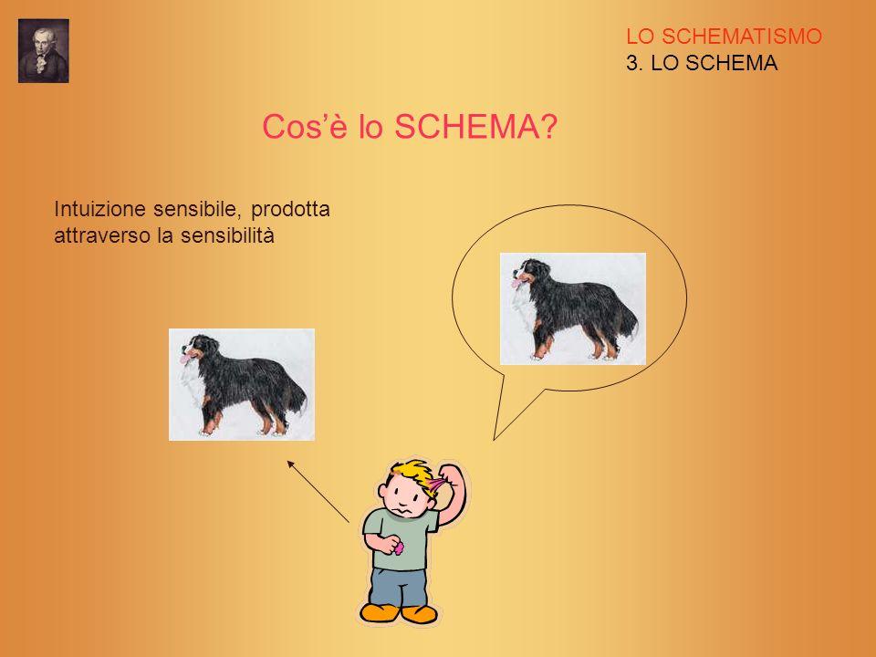 LO SCHEMATISMO 3. LO SCHEMA Cosè lo SCHEMA? Intuizione sensibile, prodotta attraverso la sensibilità