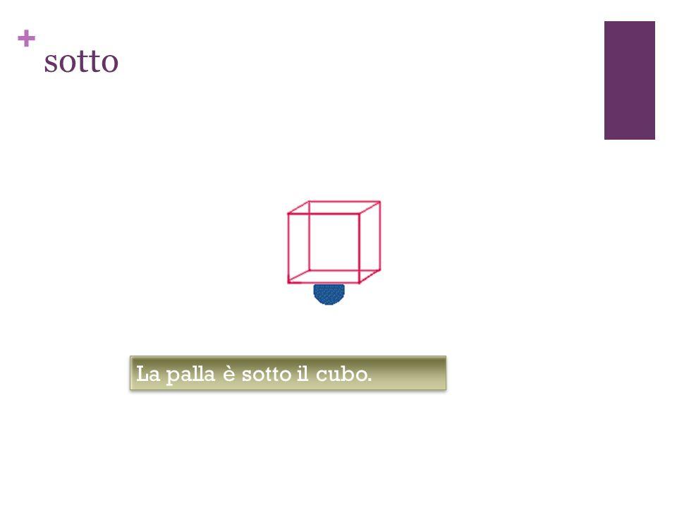 + sotto La palla è sotto il cubo.