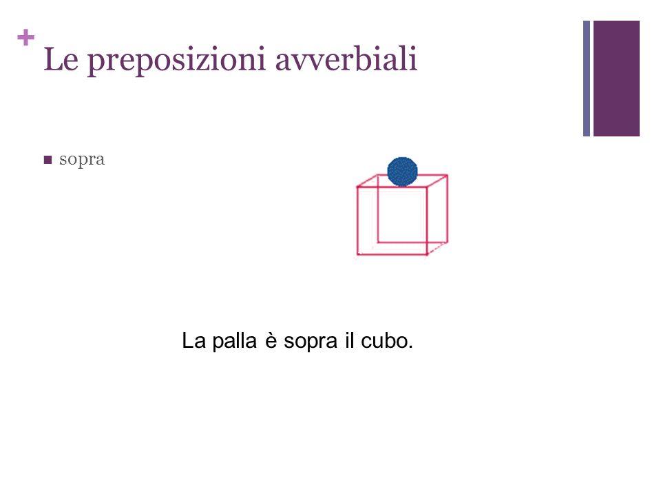 + Le preposizioni avverbiali sopra La palla è sopra il cubo.