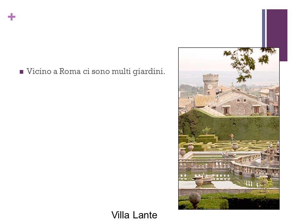 + Vicino a Roma ci sono multi giardini. Villa Lante