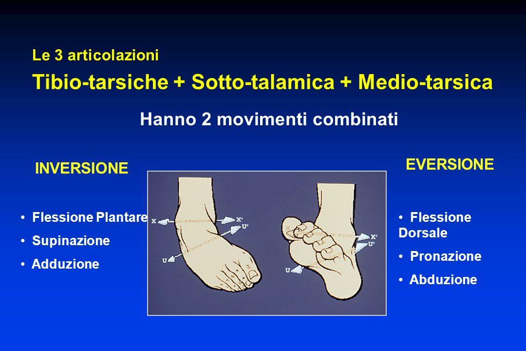 Flessione Plantare Supinazione Adduzione Le 3 articolazioni Tibio-tarsiche + Sotto-talamica + Medio-tarsica Hanno 2 movimenti combinati Flessione Dors