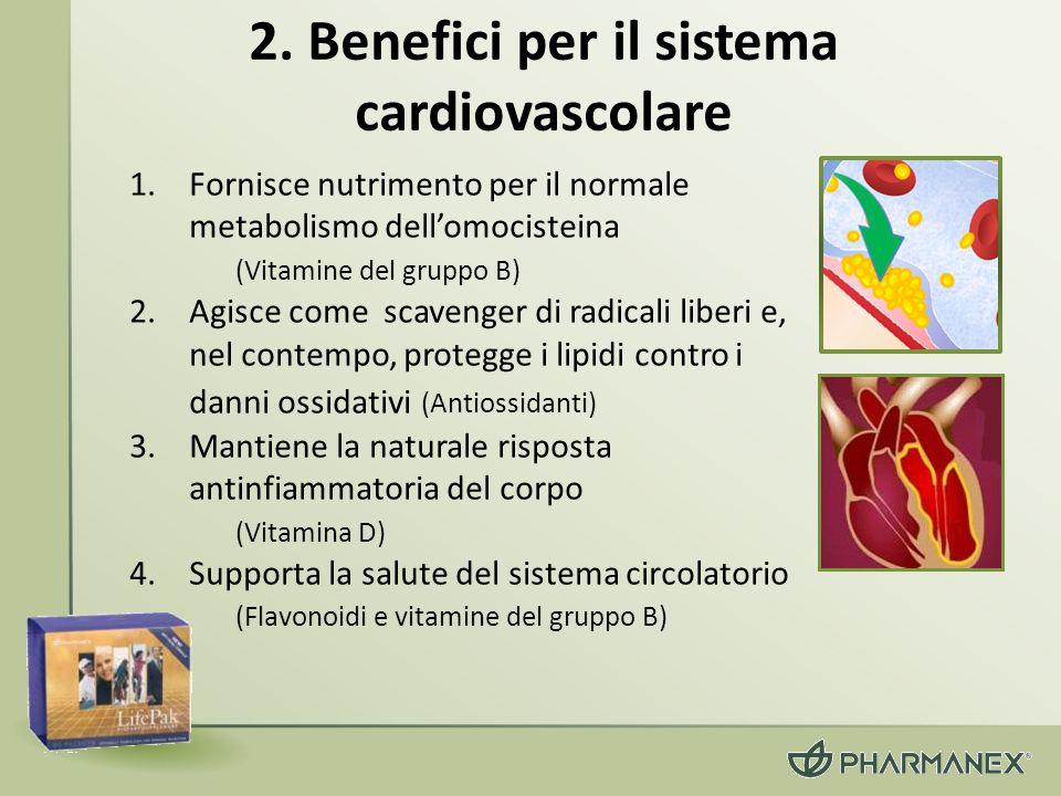 2. Benefici per il sistema cardiovascolare 1.Fornisce nutrimento per il normale metabolismo dellomocisteina (Vitamine del gruppo B) 2.Agisce come scav