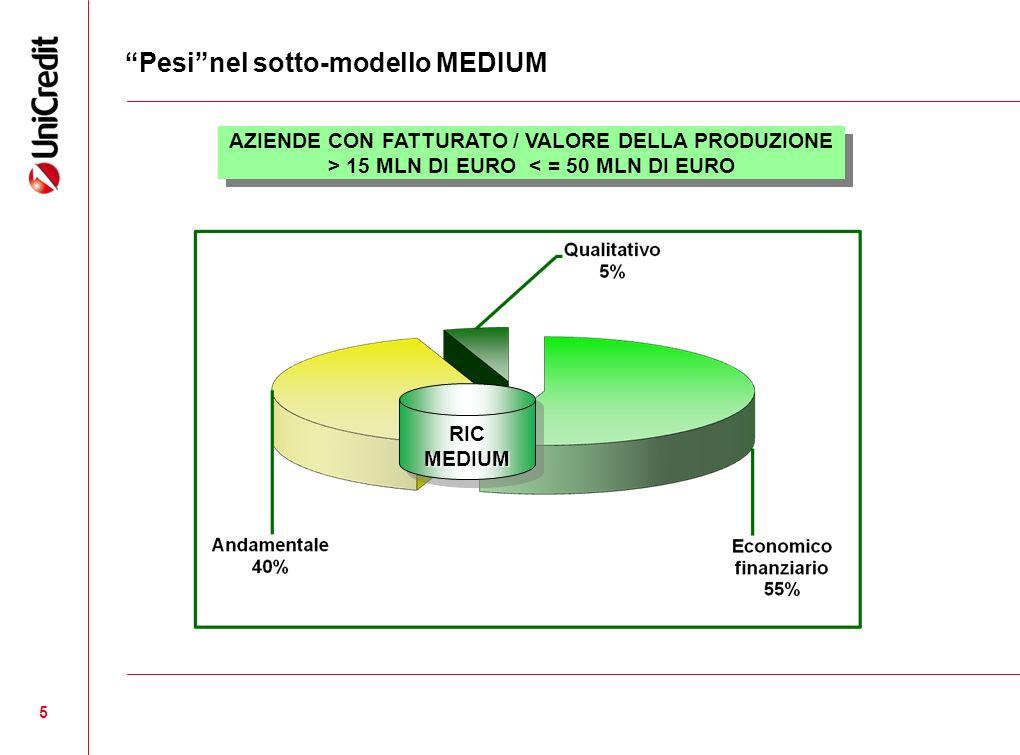 5 Pesinel sotto-modello MEDIUM RICMEDIUMRICMEDIUM AZIENDE CON FATTURATO / VALORE DELLA PRODUZIONE > 15 MLN DI EURO < = 50 MLN DI EURO