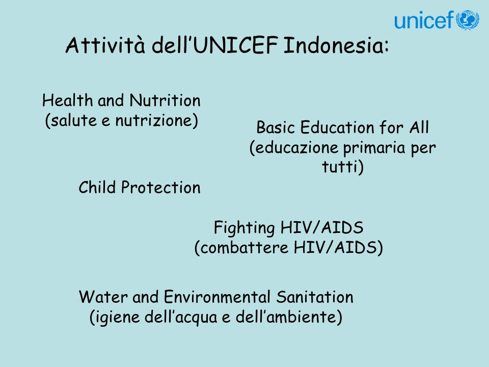 Attività dellUNICEF Indonesia: Health and Nutrition (salute e nutrizione) Basic Education for All (educazione primaria per tutti) Child Protection Fighting HIV/AIDS (combattere HIV/AIDS) Water and Environmental Sanitation (igiene dellacqua e dellambiente)