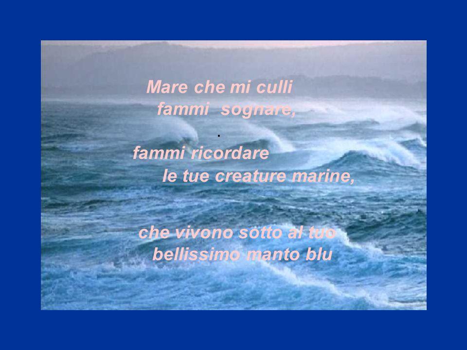che vivono sotto al tuo bellissimo manto blu. Mare che mi culli fammi sognare, fammi ricordare le tue creature marine,