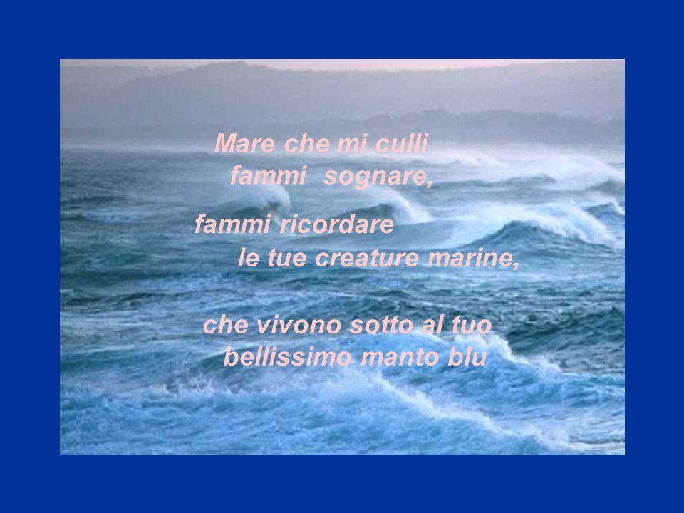 che vivono sotto al tuo bellissimo manto blu Mare che mi culli fammi sognare,. fammi ricordare le tue creature marine,