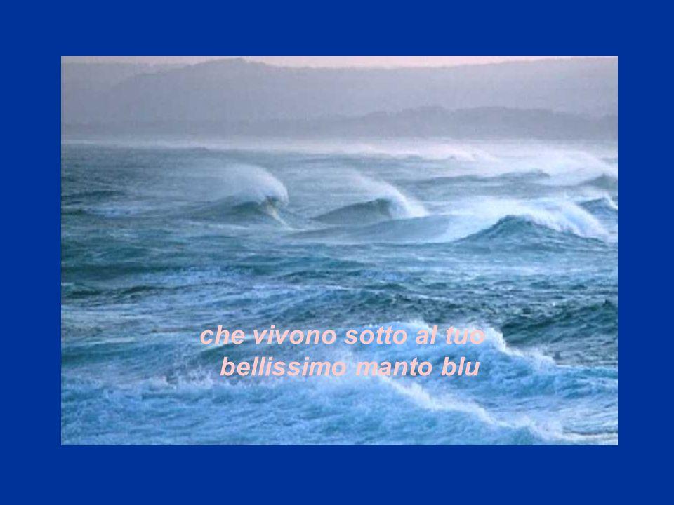 che vivono sotto al tuo bellissimo manto blu. fammi ricordare le tue creature marine,