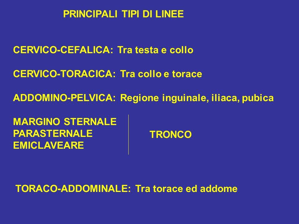 PRINCIPALI TIPI DI LINEE CERVICO-CEFALICA: Tra testa e collo CERVICO-TORACICA: Tra collo e torace ADDOMINO-PELVICA: Regione inguinale, iliaca, pubica MARGINO STERNALE PARASTERNALE EMICLAVEARE TRONCO TORACO-ADDOMINALE: Tra torace ed addome
