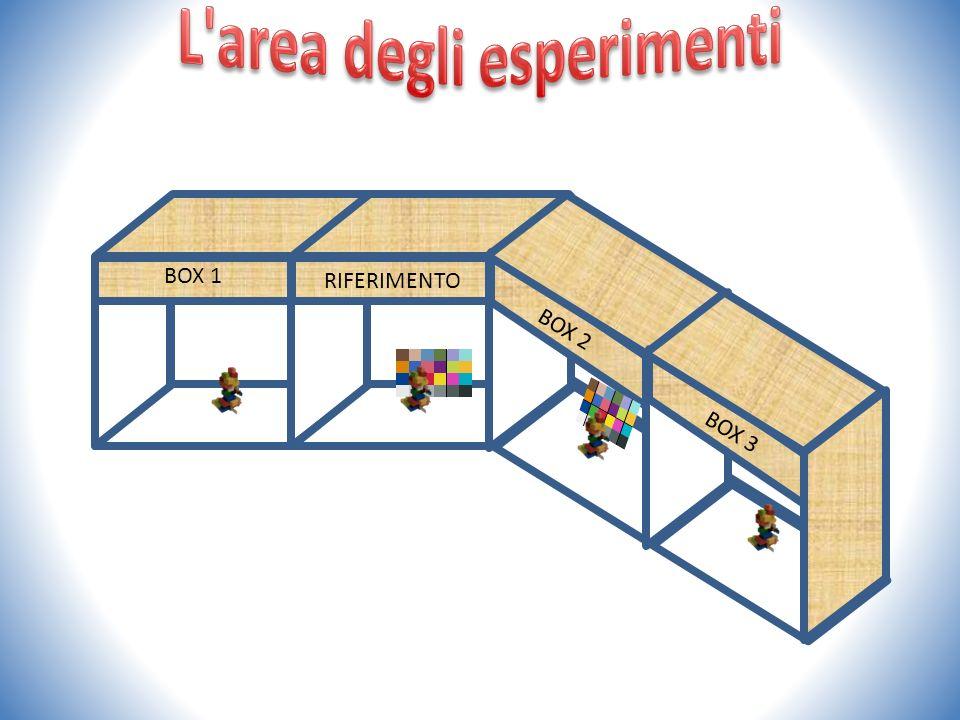 BOX 1 RIFERIMENTO BOX 2 BOX 3