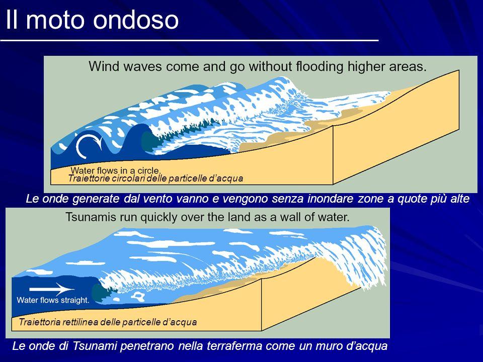 Il moto ondoso Le onde generate dal vento vanno e vengono senza inondare zone a quote più alte Traiettorie circolari delle particelle dacqua Le onde d