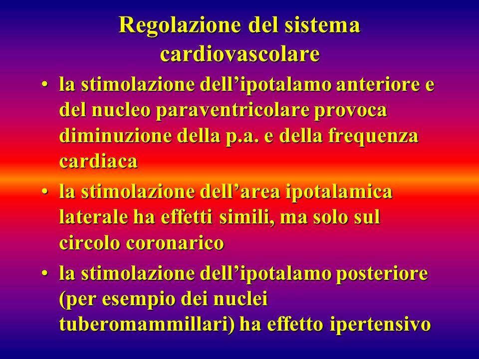 Regolazione del sistema cardiovascolare la stimolazione dellipotalamo anteriore e del nucleo paraventricolare provoca diminuzione della p.a. e della f