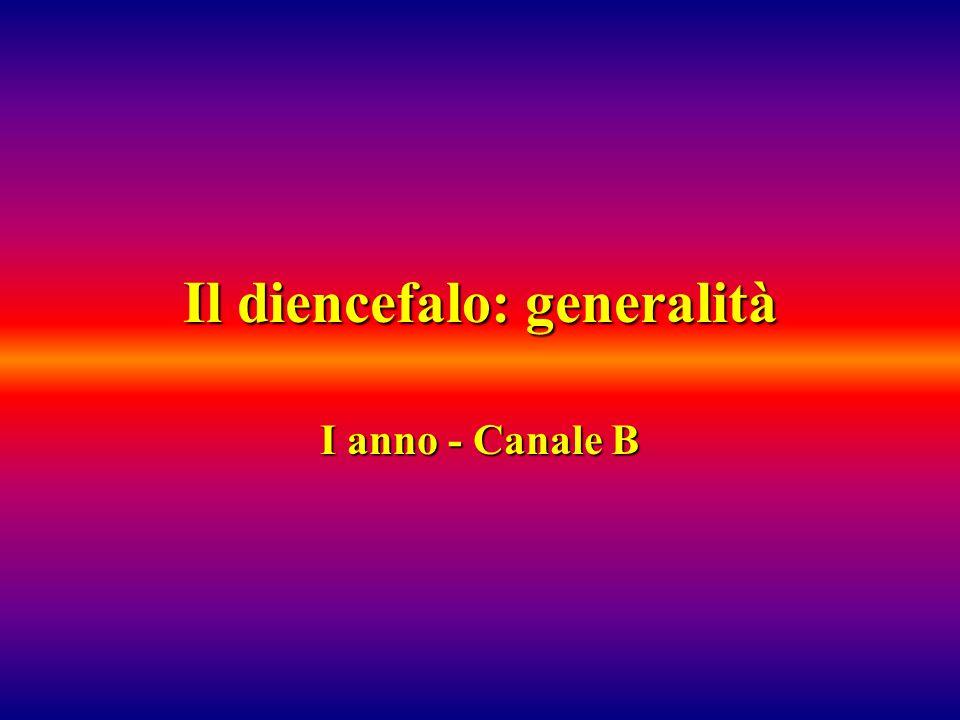 Il diencefalo: generalità I anno - Canale B