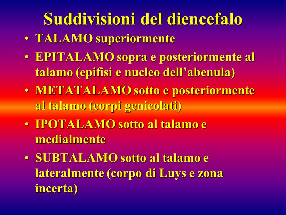 Suddivisioni del diencefalo TALAMO superiormenteTALAMO superiormente EPITALAMO sopra e posteriormente al talamo (epifisi e nucleo dellabenula)EPITALAM