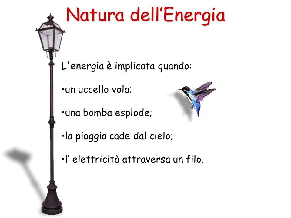 L'energia è implicata quando: un uccello vola; una bomba esplode; la pioggia cade dal cielo; l elettricità attraversa un filo. Natura dellEnergia