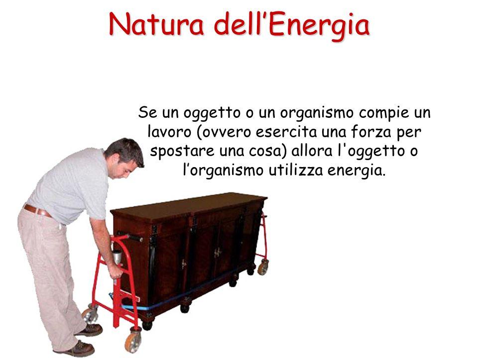 Se un oggetto o un organismo compie un lavoro (ovvero esercita una forza per spostare una cosa) allora l'oggetto o lorganismo utilizza energia. Natura