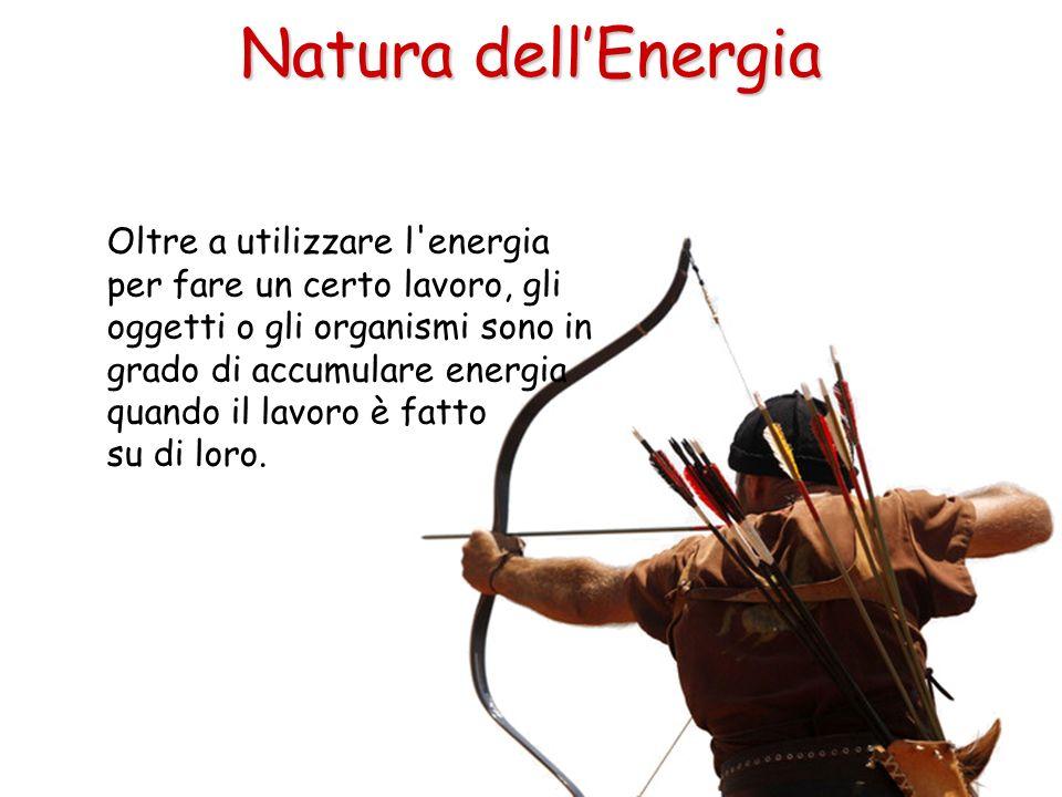 Oltre a utilizzare l'energia per fare un certo lavoro, gli oggetti o gli organismi sono in grado di accumulare energia quando il lavoro è fatto su di