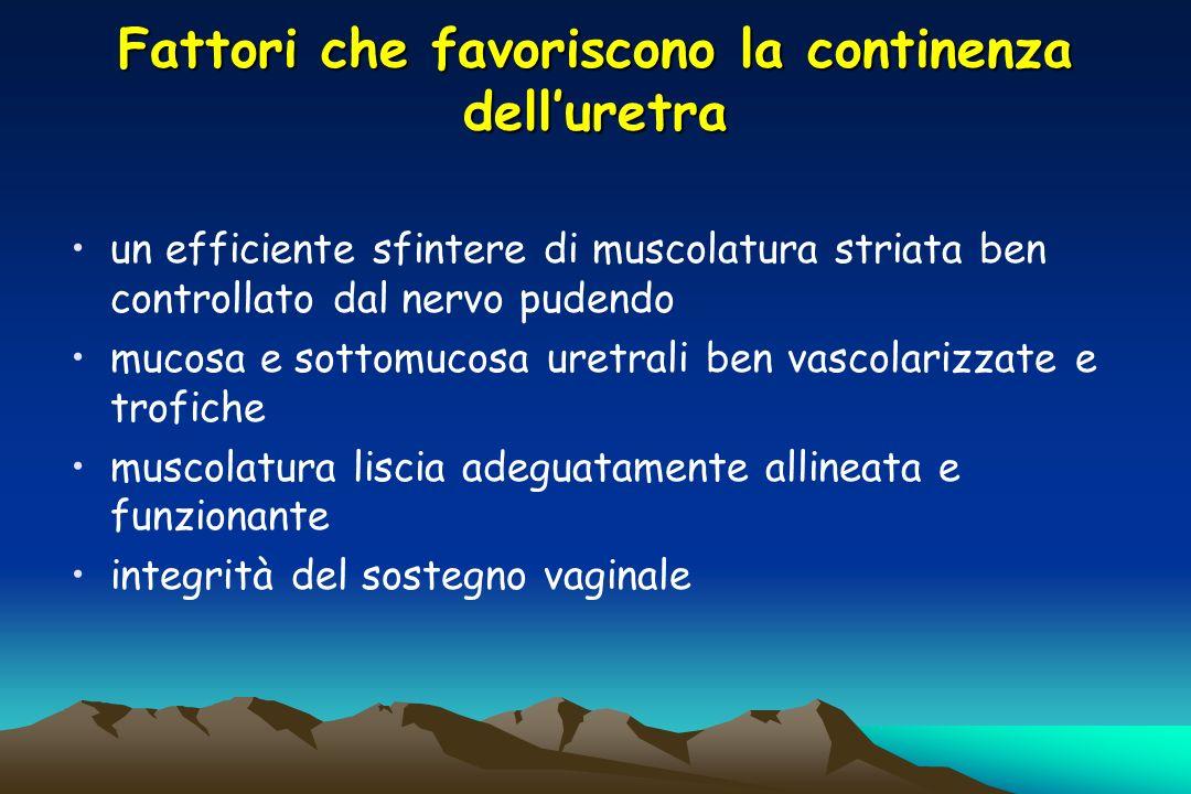 Fattori che favoriscono la continenza delluretra un efficiente sfintere di muscolatura striata ben controllato dal nervo pudendo mucosa e sottomucosa