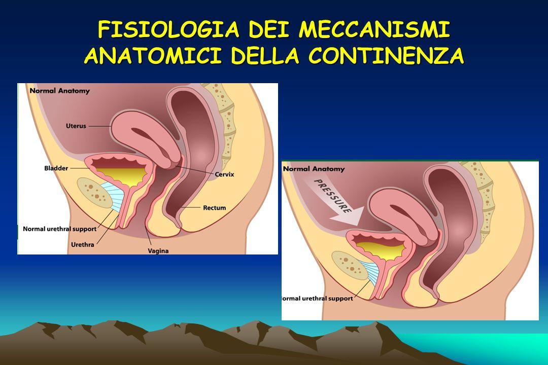 Effetto della pressione intra-addominale in rapporto alla posizione delluretra Un aumento della pressione intra- addominale aumenta la pressione sia allinterno della vescica che delluretra contribuendo a tenerla chiusa Uretra intra- addominale