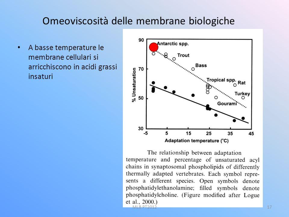 Omeoviscosità delle membrane biologiche A basse temperature le membrane cellulari si arricchiscono in acidi grassi insaturi 17MLB PT2012