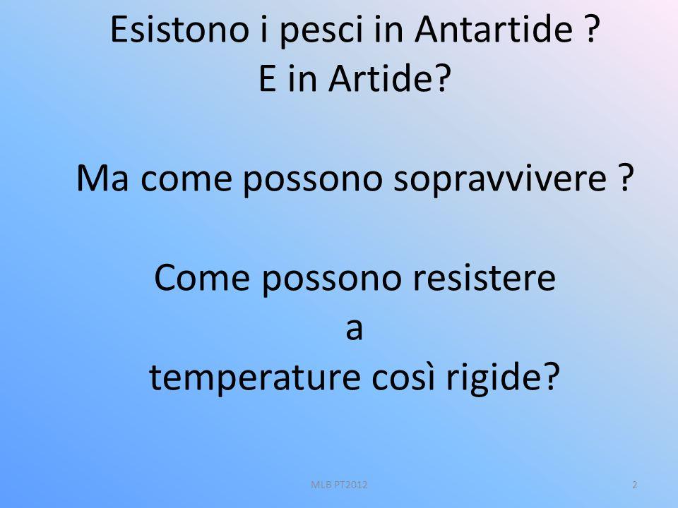 Esistono i pesci in Antartide ? E in Artide? Ma come possono sopravvivere ? Come possono resistere a temperature così rigide? 2MLB PT2012