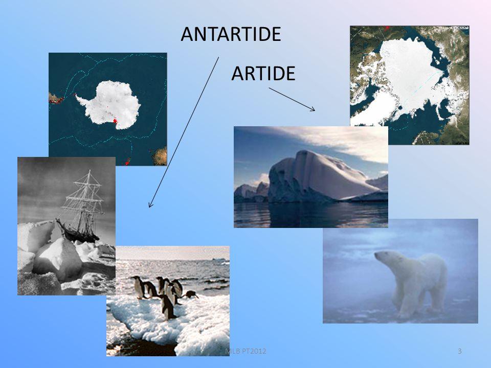 I mari Il mare antartico mantiene una temperatura inferiore a -1° C per tutto lanno.