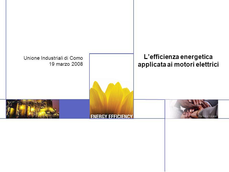 Lefficienza energetica applicata ai motori elettrici Unione Industriali di Como 19 marzo 2008