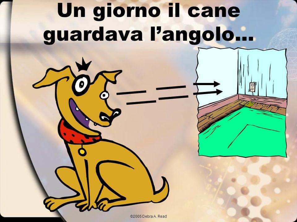 ©2005 Debra A. Read Un giorno il cane guardava langolo...