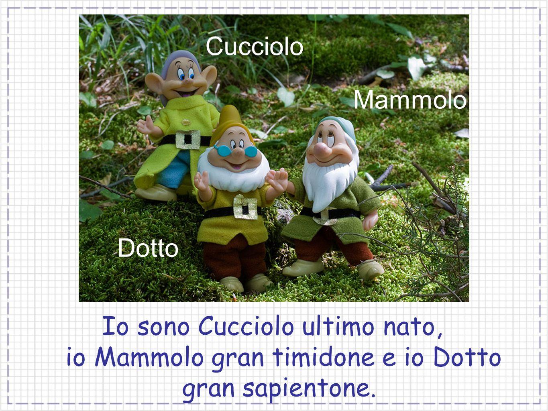 Cucciolo Dotto Mammolo Io sono Cucciolo ultimo nato, io Mammolo gran timidone e io Dotto gran sapientone.