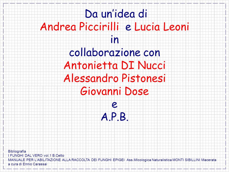 Da unidea di Andrea Piccirilli e Lucia Leoni in collaborazione con Antonietta DI Nucci Alessandro Pistonesi Giovanni Dose e A.P.B. Bibliografia I FUNG