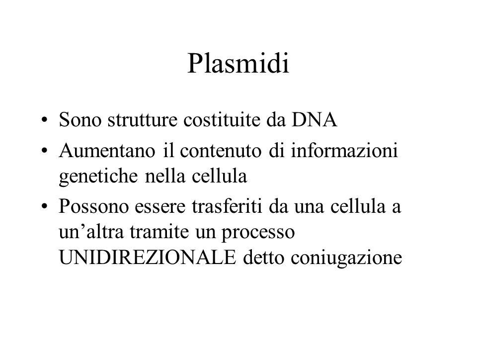 Plasmidi Sono strutture costituite da DNA Aumentano il contenuto di informazioni genetiche nella cellula Possono essere trasferiti da una cellula a unaltra tramite un processo UNIDIREZIONALE detto coniugazione