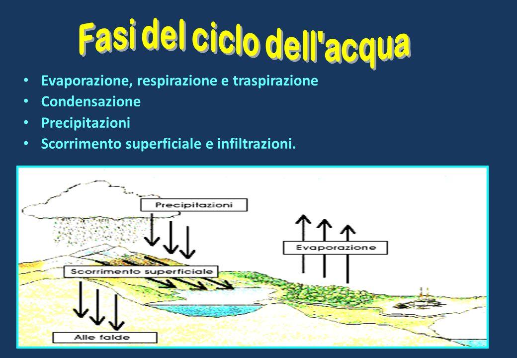 Evaporazione, respirazione e traspirazione Condensazione Precipitazioni Scorrimento superficiale e infiltrazioni.