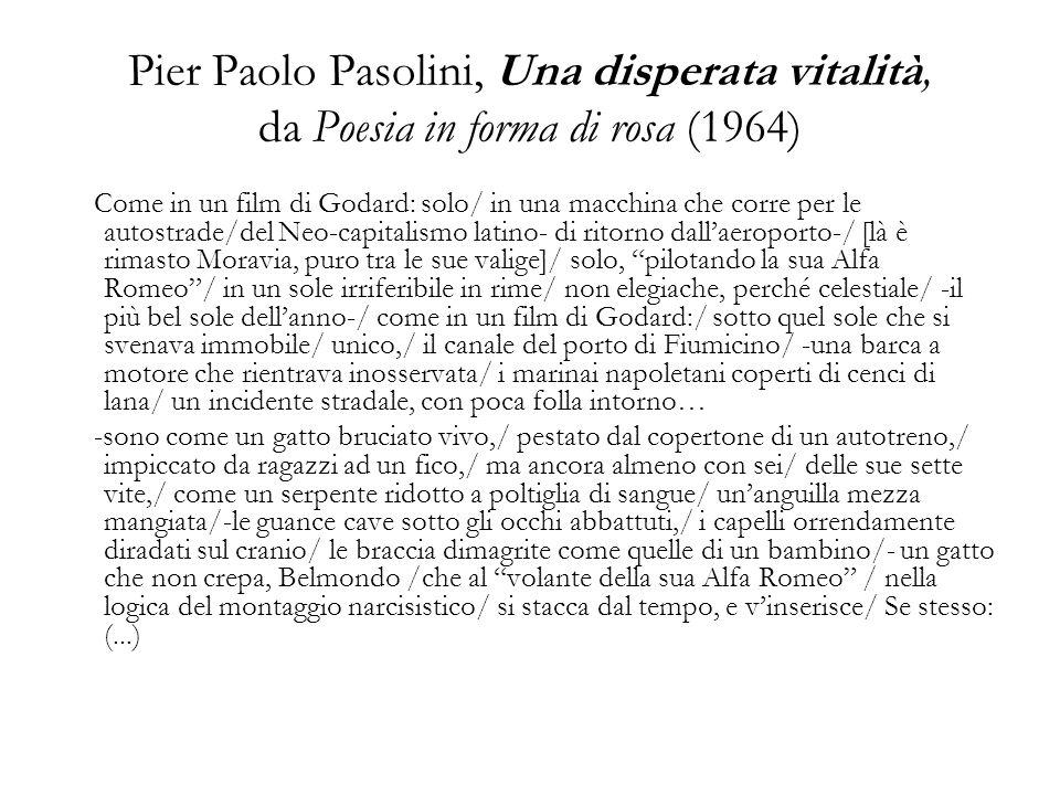 Pasolini e Zanzotto Attenzione per il cinema e ricerca in esso di un linguaggio alternativo.