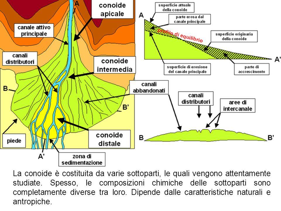 La conoide è costituita da varie sottoparti, le quali vengono attentamente studiate. Spesso, le composizioni chimiche delle sottoparti sono completame