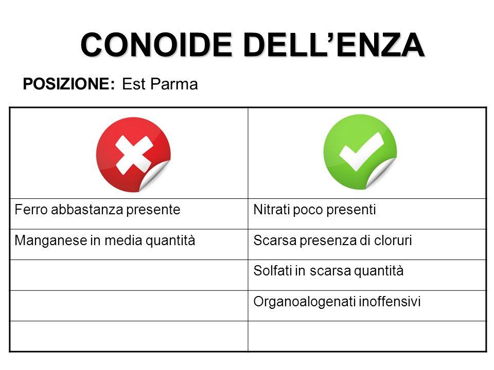 CONOIDE DELLENZA POSIZIONE: Est Parma Ferro abbastanza presenteNitrati poco presenti Manganese in media quantitàScarsa presenza di cloruri Solfati in