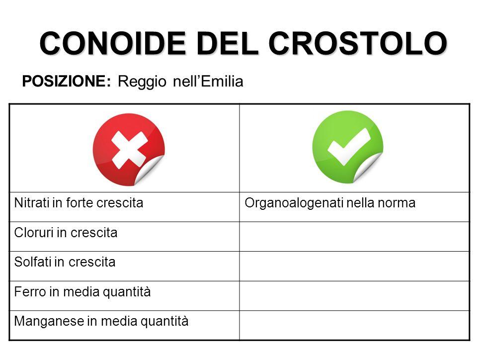 CONOIDE DEL CROSTOLO POSIZIONE: Reggio nellEmilia Nitrati in forte crescitaOrganoalogenati nella norma Cloruri in crescita Solfati in crescita Ferro i