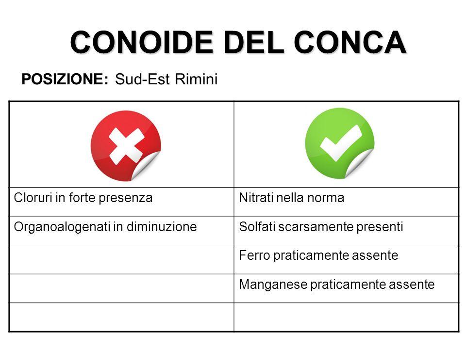 CONOIDE DEL CONCA POSIZIONE: Sud-Est Rimini Cloruri in forte presenzaNitrati nella norma Organoalogenati in diminuzioneSolfati scarsamente presenti Fe