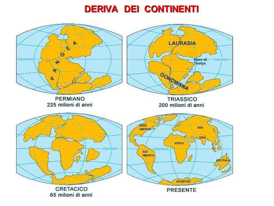 SUBDUZIONE Larea di corrugamento presente in corrispondenza della Calabria è responsabile della orogenesi calabrese e della elevata sismicità della regione.