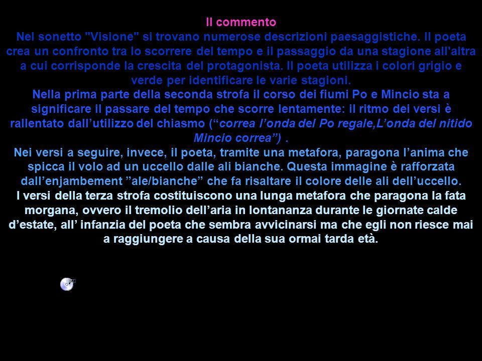 Entrambe le poesie di Giosuè Carducci Visione e San Martino sono sonetti.